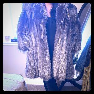 Custom silver fox 🇮🇹